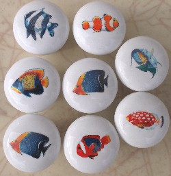 cabinet knob tropical fish